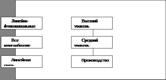 Матричная схема (линейные и